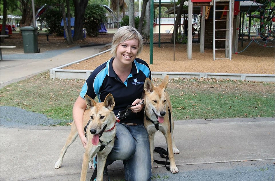 Dog trainer Bundaberg