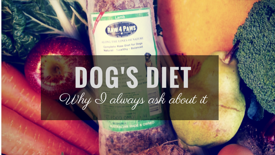 Why I Always Ask About A Dog's Diet