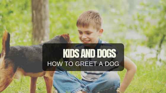 Kids & Dogs: How To Greet A Dog!