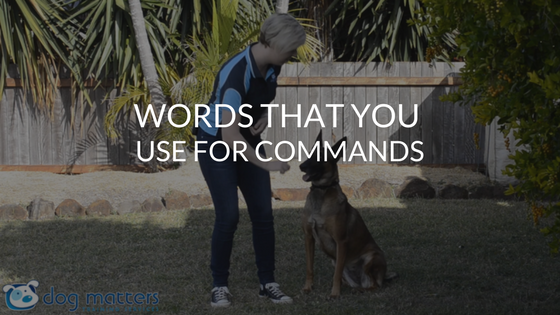 Which Words Should You Use For Your Commands