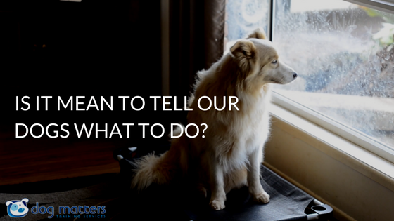 Is It Mean To Tell Our Dogs What To Do?