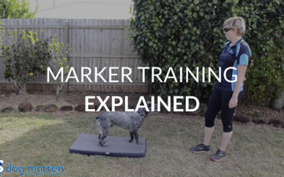 Marker Training Explained