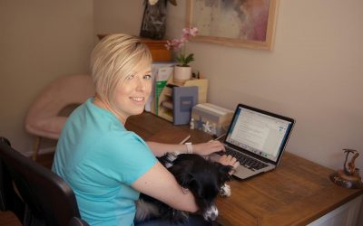 62 Proven Ways To Get More Dog Training Clients